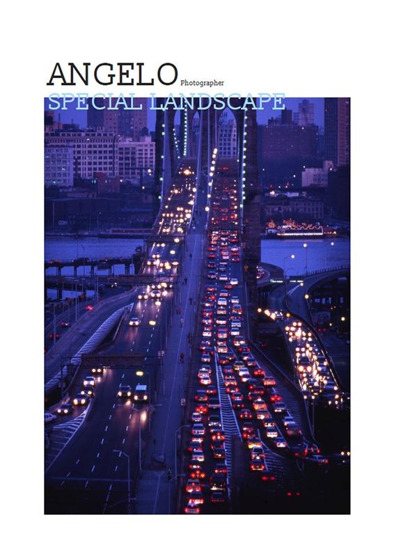 book-angelo-cogerino-special-landscape